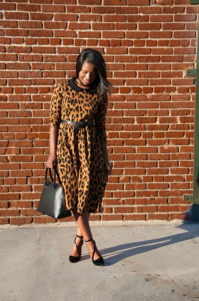 that leopard dress via dainty jewells 3 - downtown demure