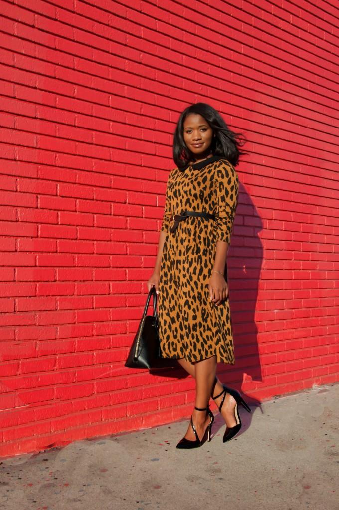 that leopard dress via dainty jewells - downtown demure